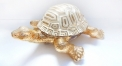 porcelain golden turtle figure